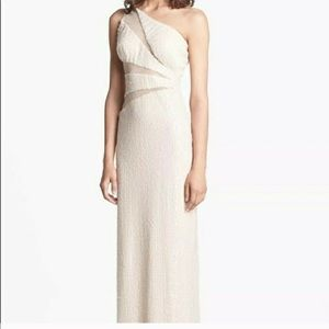 Adrianna Papell beautiful gown